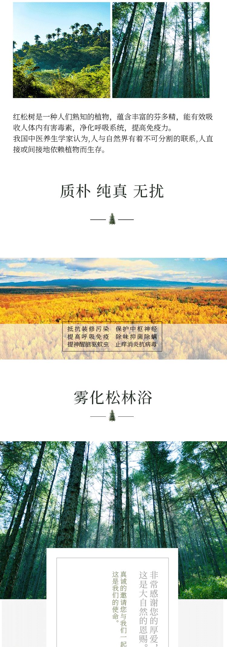 红松树是一种人们熟知的植物